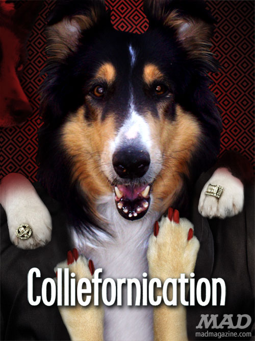 The golden Retriever girls labradora dora the explorer the idiotical don't trust the b in apt 23 californication colliefornication